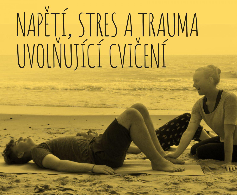 TRE Workshop - Napětí, stres a trauma uvolňující cvičení